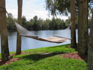 Lakeside Hammock